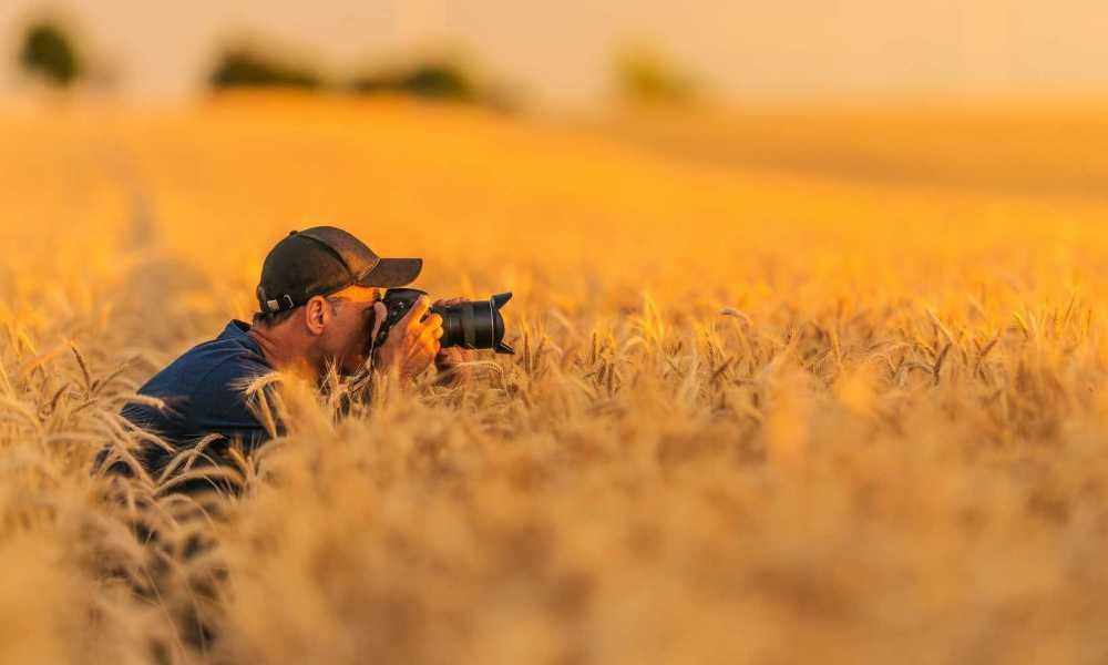 Nikon AF FX NIKKOR 50mm f1.8D Review